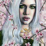 Cherry Blossoms Prints