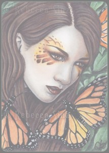 Butterflies & Moths Series